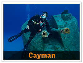 package-Cayman