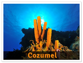 package-Cozumel